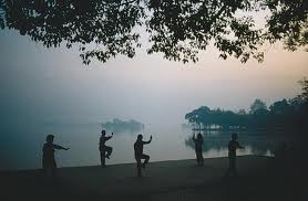Health Benefits of Tai Chi and Qigong|Dr. Denise Nagel